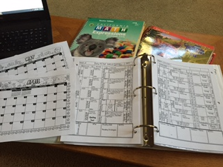 TE's and Lesson plan book
